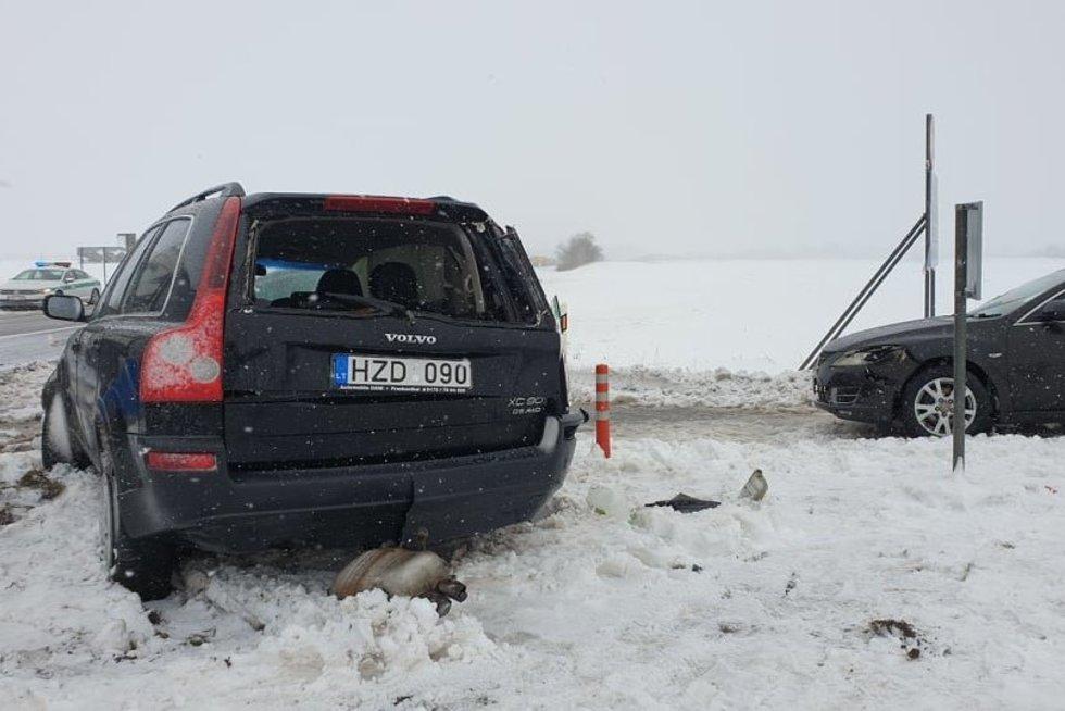 (nuotr. Raimundas Maslauskas/TV3)