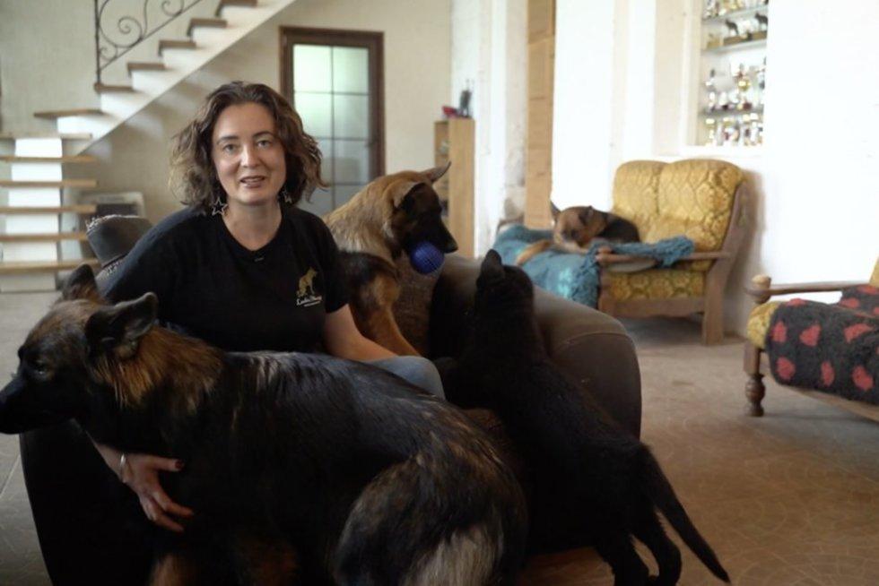 Veislyno savininkė papasakojo, kodėl vokiečių aviganiai  – geriausi šunys