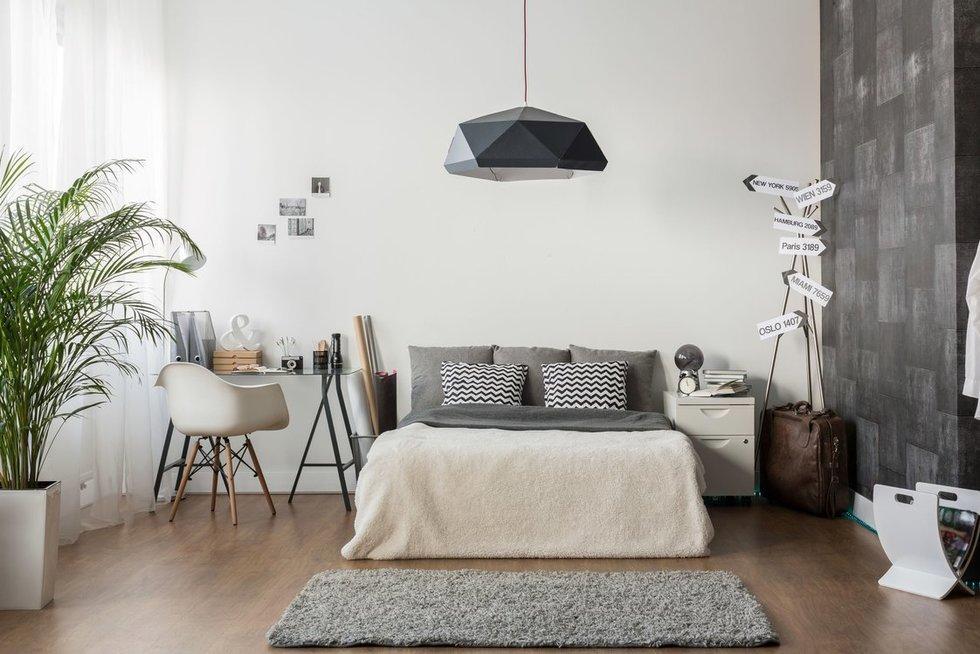 Namų interjeras (nuotr. 123rf.com)