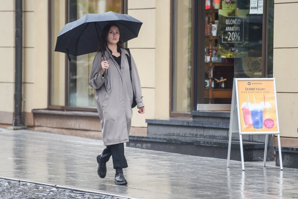 Orai, lietus (Fotodiena/ Viltė Domkutė)