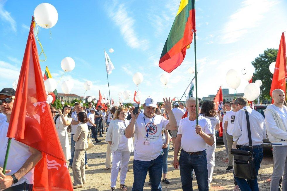 Protestas prie Seimo (nuotr. Fotodiena/Justino Auškelio)