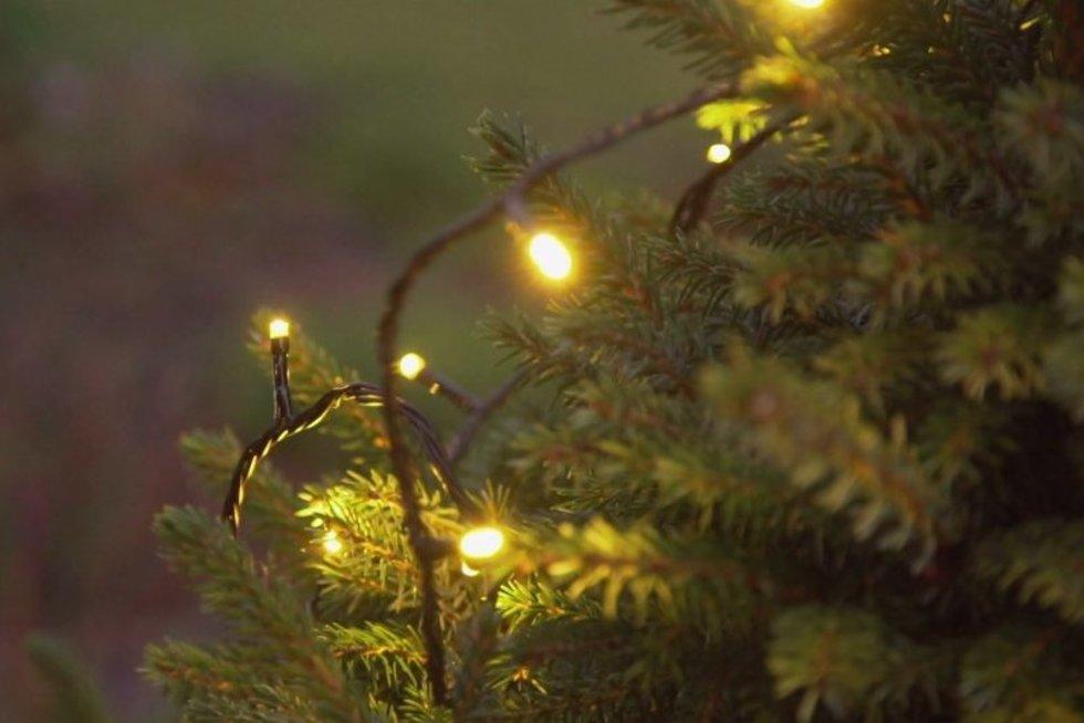 Kaip savo kieme įsirengti kalėdinį lauko apšvietimą
