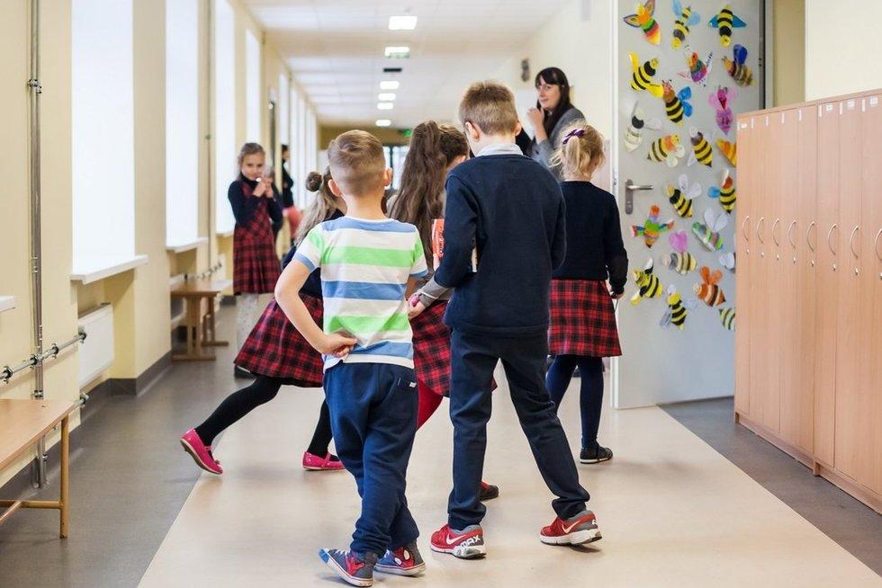 mokykla (nuotr. Vilniaus miesto savivaldybės)